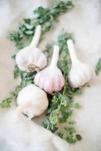 fresh garlic and thyme for tomato soup