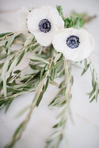 olive branches and florals