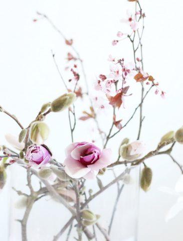 spring blooms case DIY
