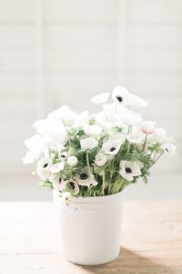 white flowers in white vase