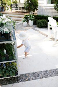 Summer planting tips