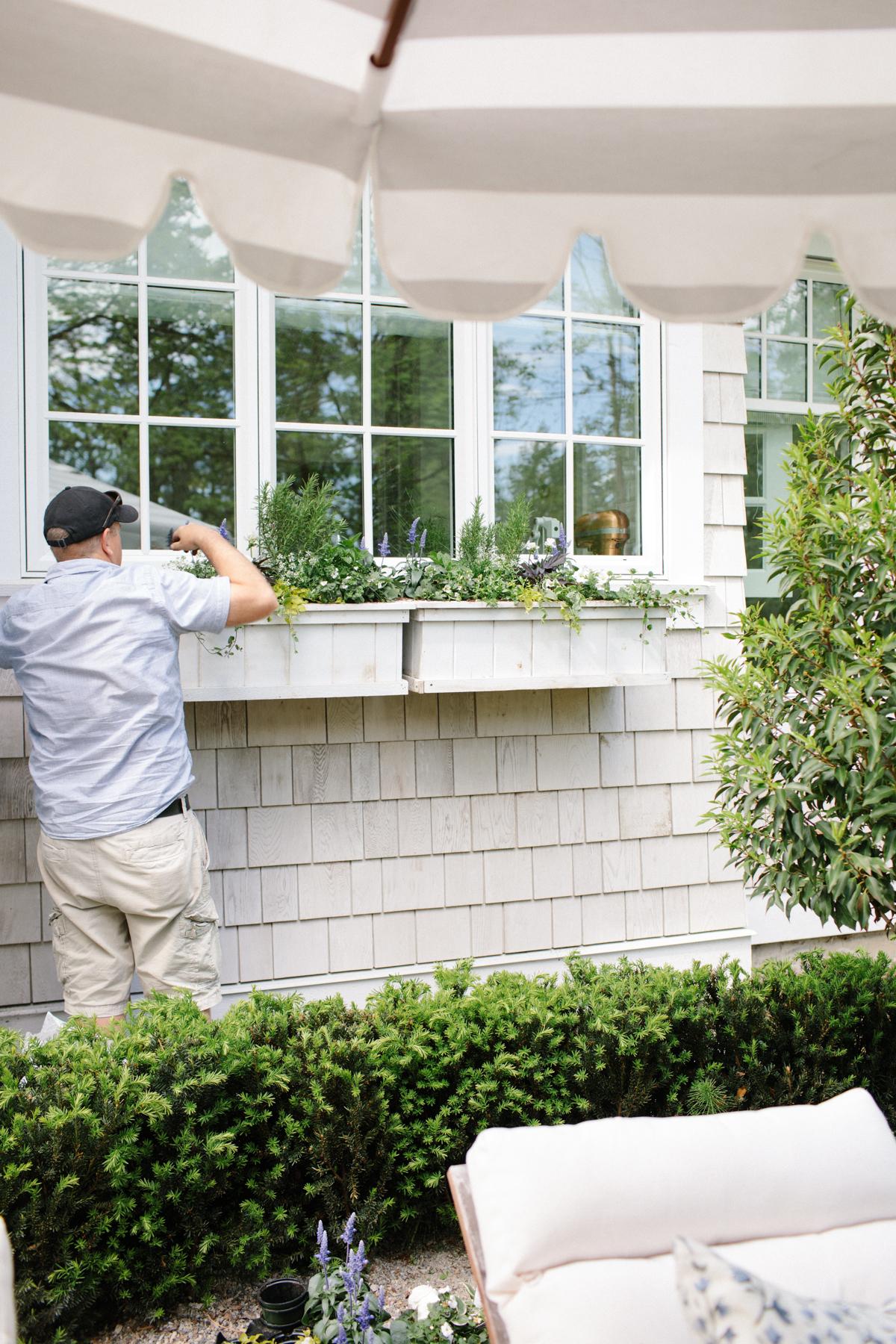 How to plant a garden planter