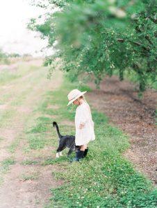 Almond Breeze California Grower
