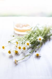 chamomile flowers and honey
