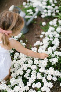 little girl picking flower