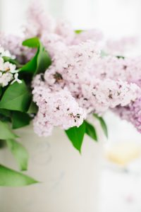 pretty lilacs