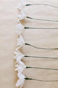paper daisies in a row