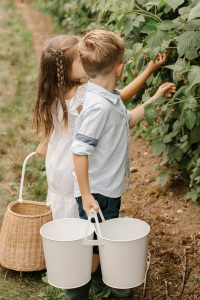 kids raspberry picking