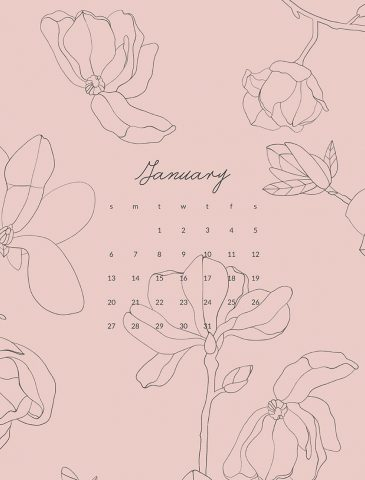 pink line art floral desktop background with January Calendar