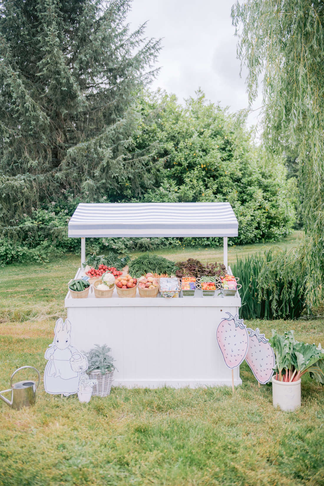 Peter rabbit outdoor party food table
