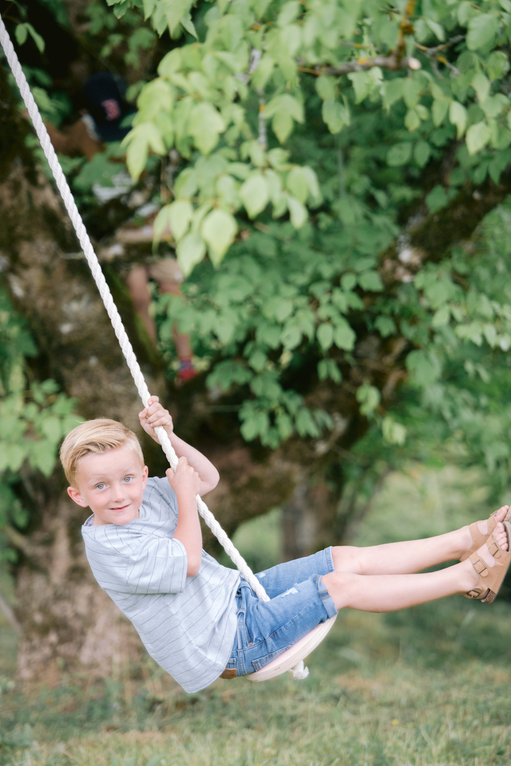 Young boy on a tree swing